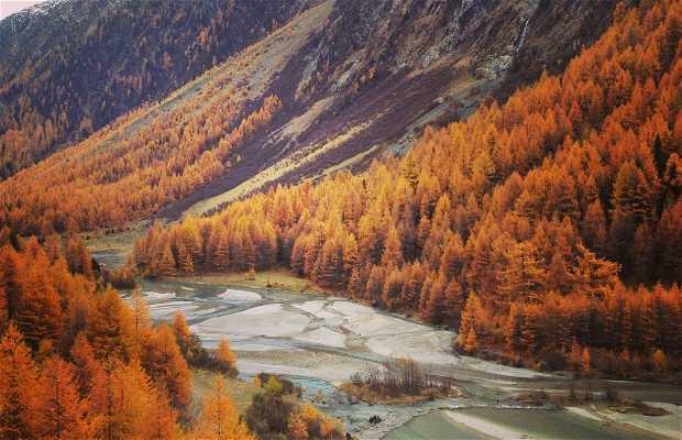 Las carreteras alpinas del Valle del Rin Anterior