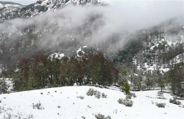 Camino a cerro chapelco