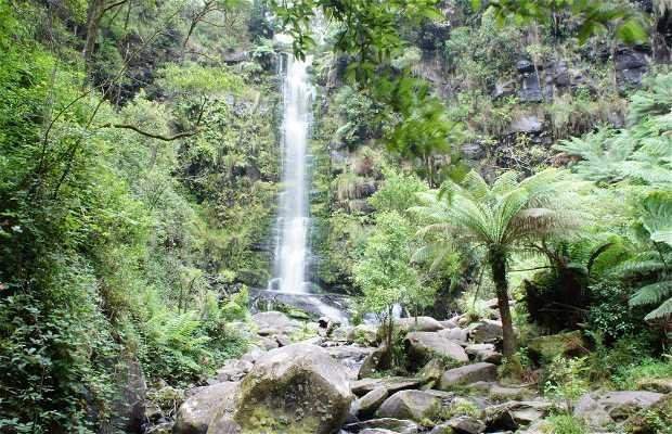 Erskine Falls,Great Ocean Rd