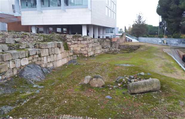 Restos arqueológicos de Moreria