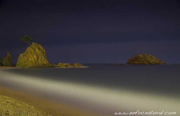 Playa de Tossa
