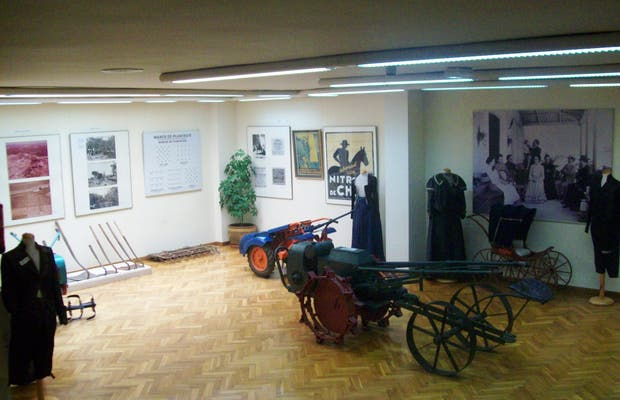 Museo de la Naranja