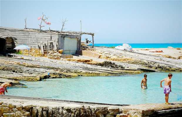 Port Es Caló