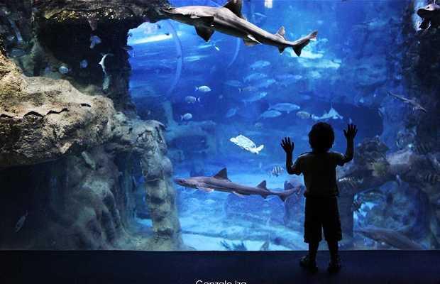 Aquarium de San Sebastian