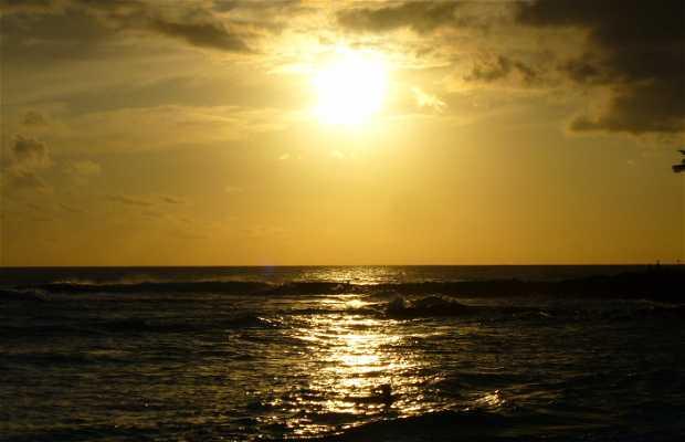 APoipu Beach