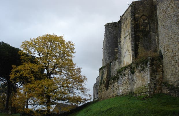 Château de Benauges