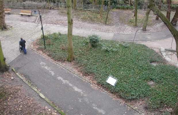 Offenbourg garden