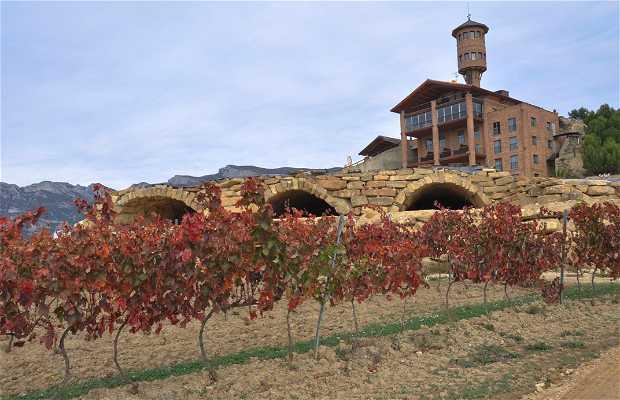 Eguren Ugarte Winery
