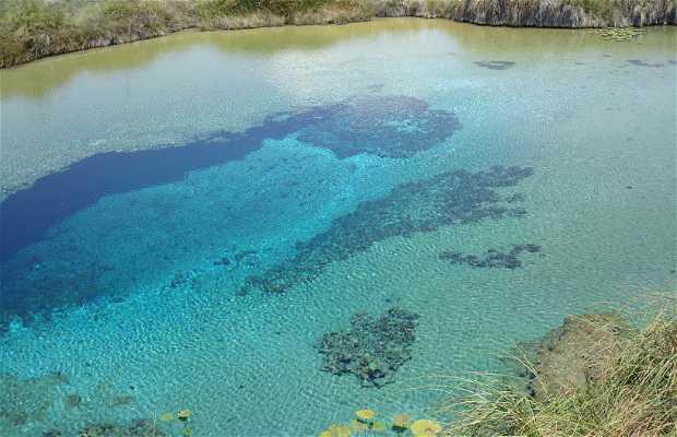 La piscine bleue