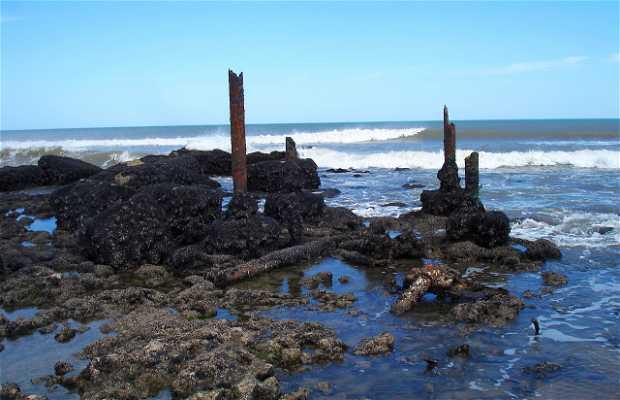 Ricles Shipwreck