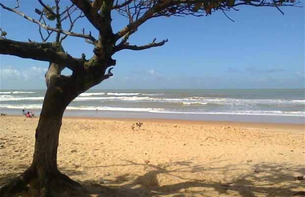 Praia da Ponta da Fruta