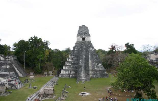 El Gran Jaguar Tikal