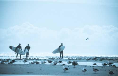 Playa de Fritzroy