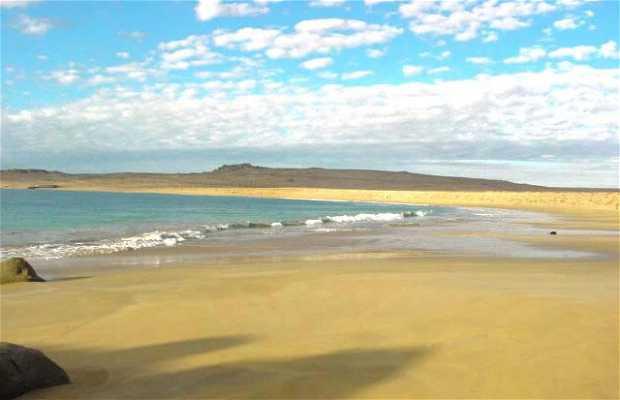 Playa Cisne