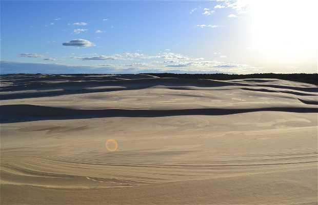 4x4 dunas Port Stephens