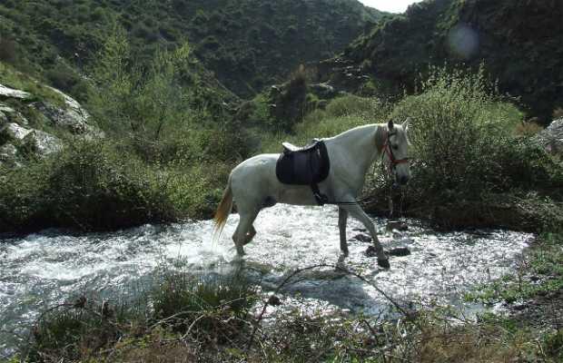 Toma de agua rio Maitena
