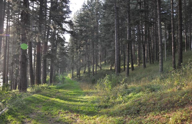 Sentieri di trekking