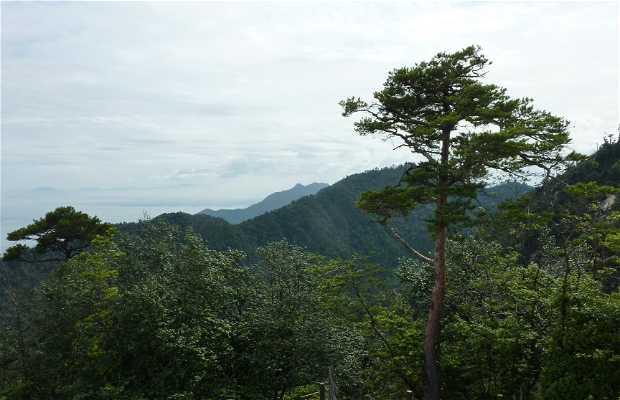 Shishiiwa Viewpoint