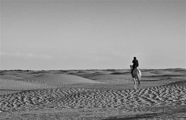 Douz, la puerta del Sáhara