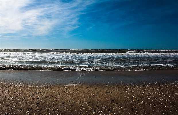 La Playa de Pinamar