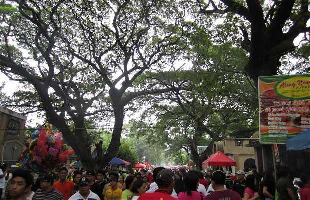Manila South Cemetery