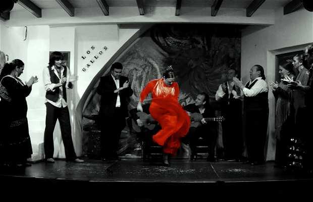 Tablao Los Gallos