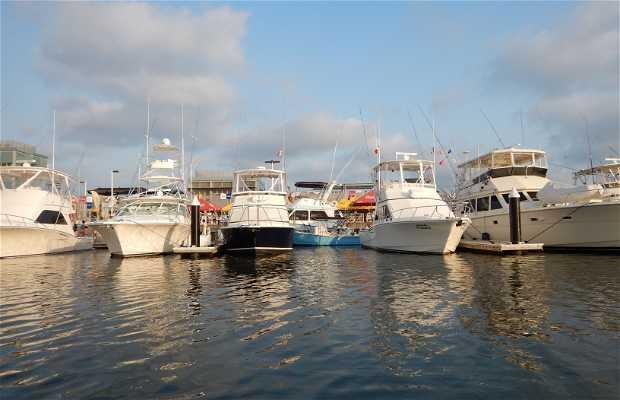 Muelle de San Blas