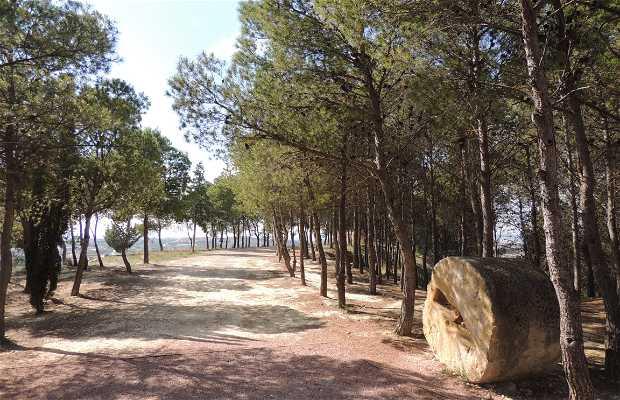 Parque Santa María de Horta
