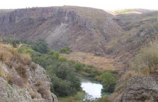 Río Tajo por Villarrubia de Santiago