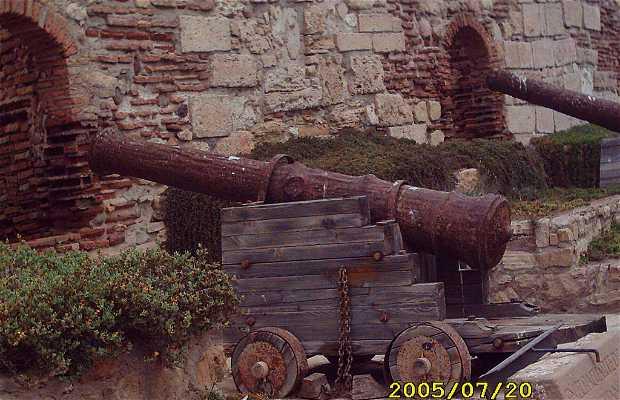 Museo de Arqueología e Historia