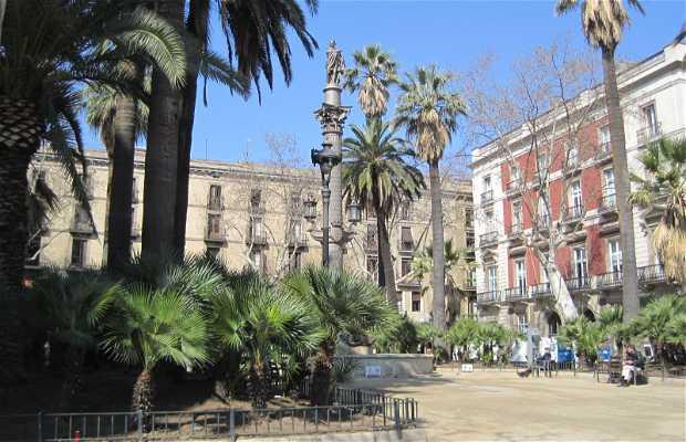 Plaza del Duque de Medinaceli