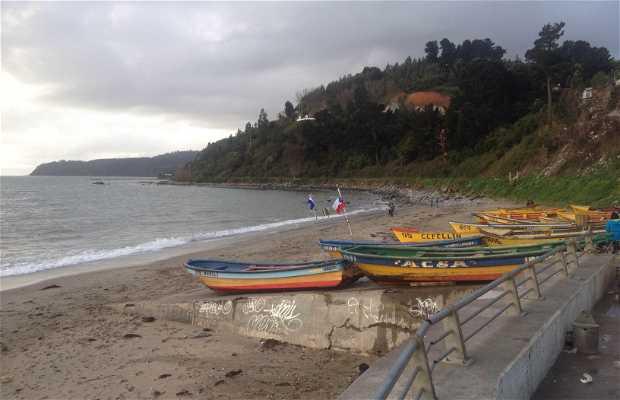 Puerto artesanal de lirquén