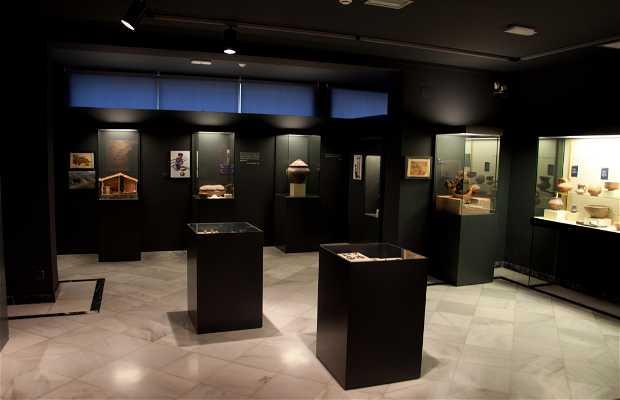Musée de la Romanisation