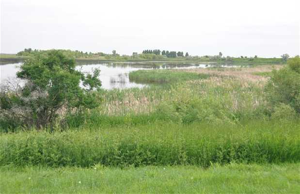 Parque provincial Kinbrook Island
