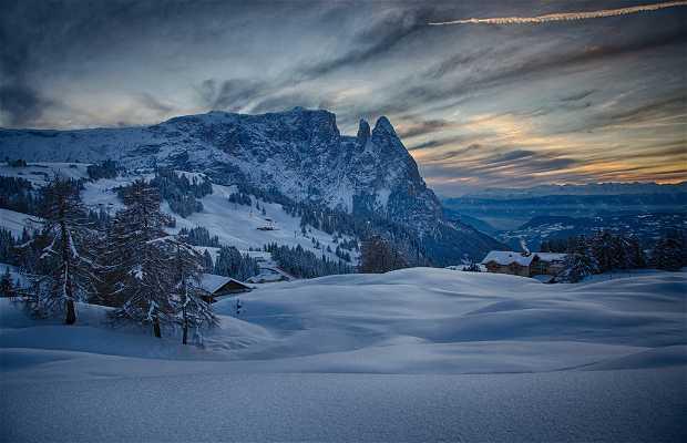 Alpe di Siusi - Seiser Alm