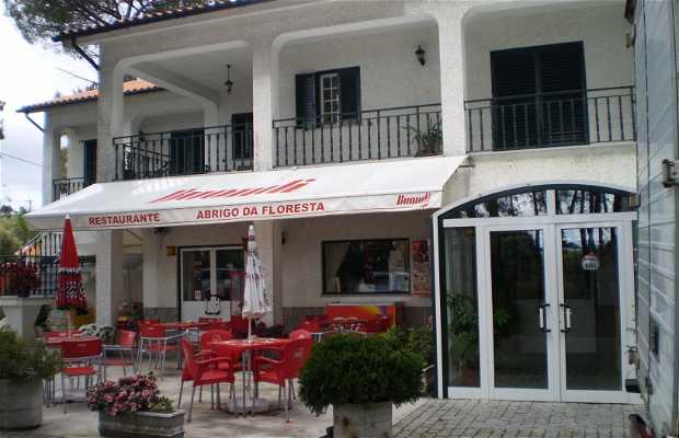 Restaurant Abrigo da Floresta