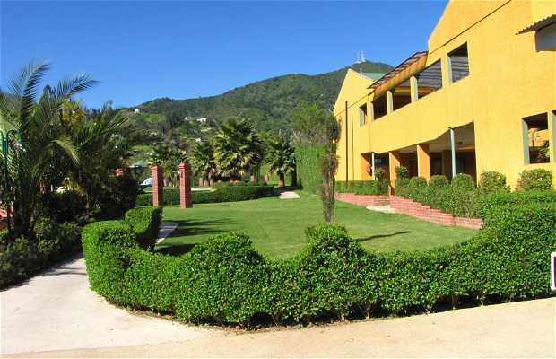 Jardineria y Servicios 2005 SL