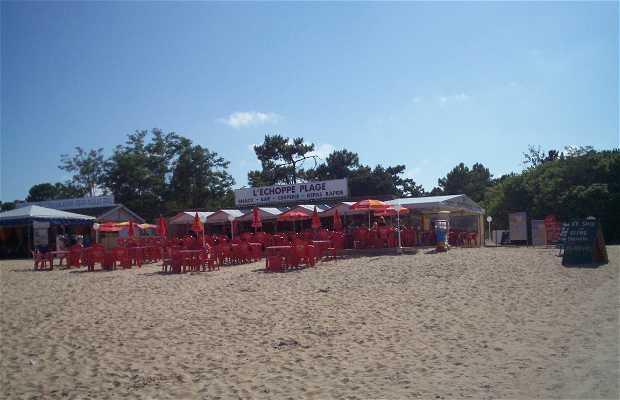 Playa de Boyardville