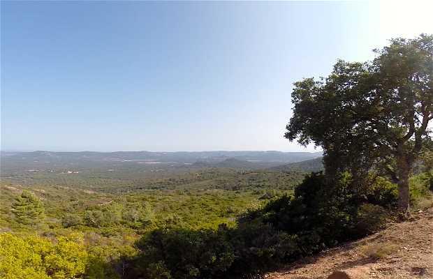Col de Bacinu