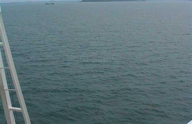 Singapore to Sumatra Ferry