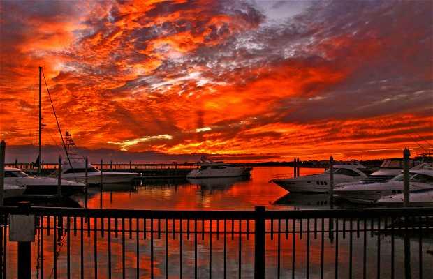 Palafox Pier & Yacht Harbor