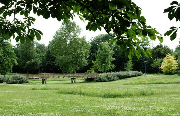 Jardin Jard anglais