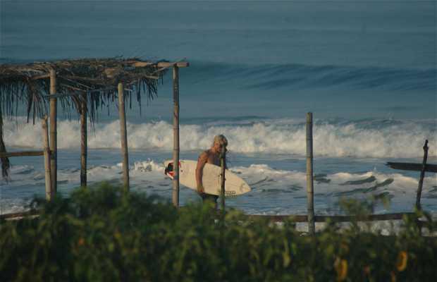 La spiaggia di Guayaquil