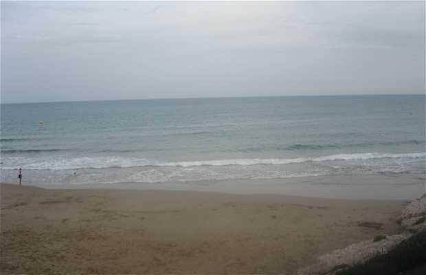 Cala dels Llenguadets Beach