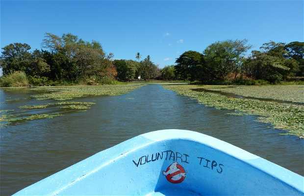 Archipiélago del Lago Nicaragua