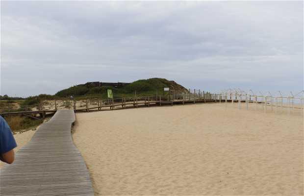 Passeio pela costa de Vila Nova de Gaia