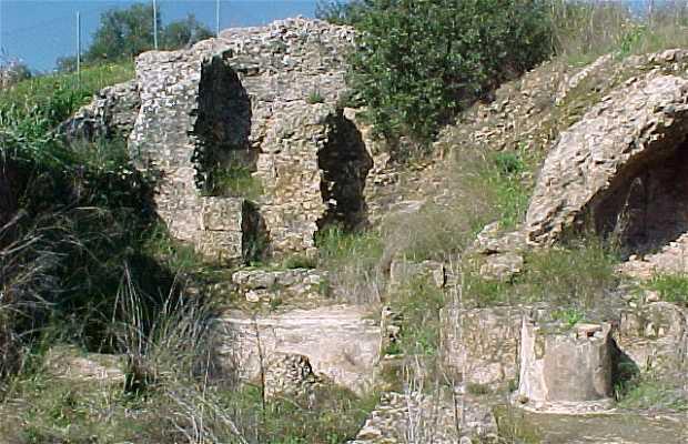 Arva (Roman ruins)