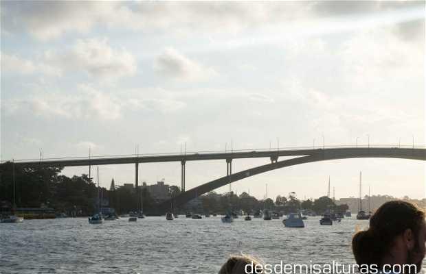 Crucero por el río Parramatta