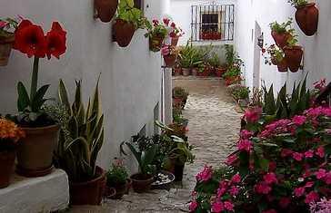 El Jardin del Califa Restaurant