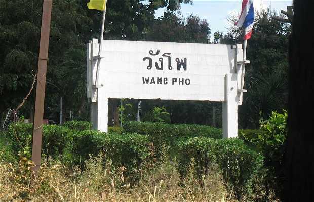 Wang Po